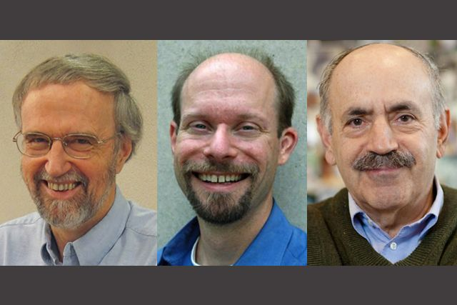 Three MIT biologists receive NIH Outstanding Investigator Awards