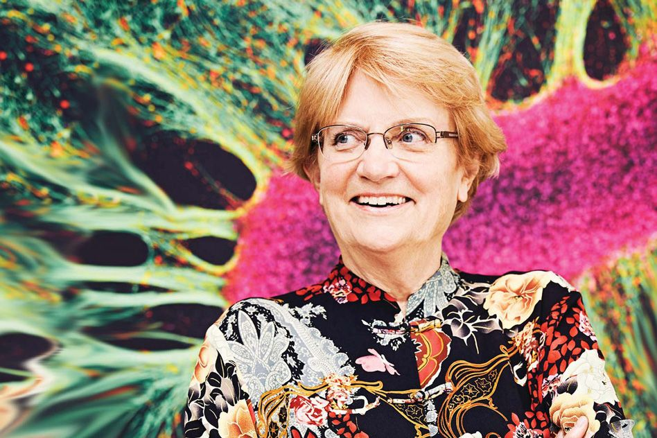 3Q: Nancy Hopkins on the impact and potential of cancer prevention