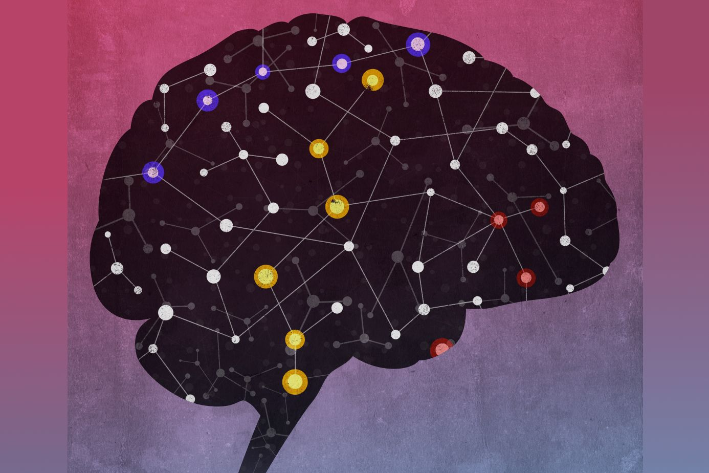 Network of diverse noncoding RNAs acts in the brain