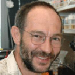 Norbert Perrimon, Harvard University