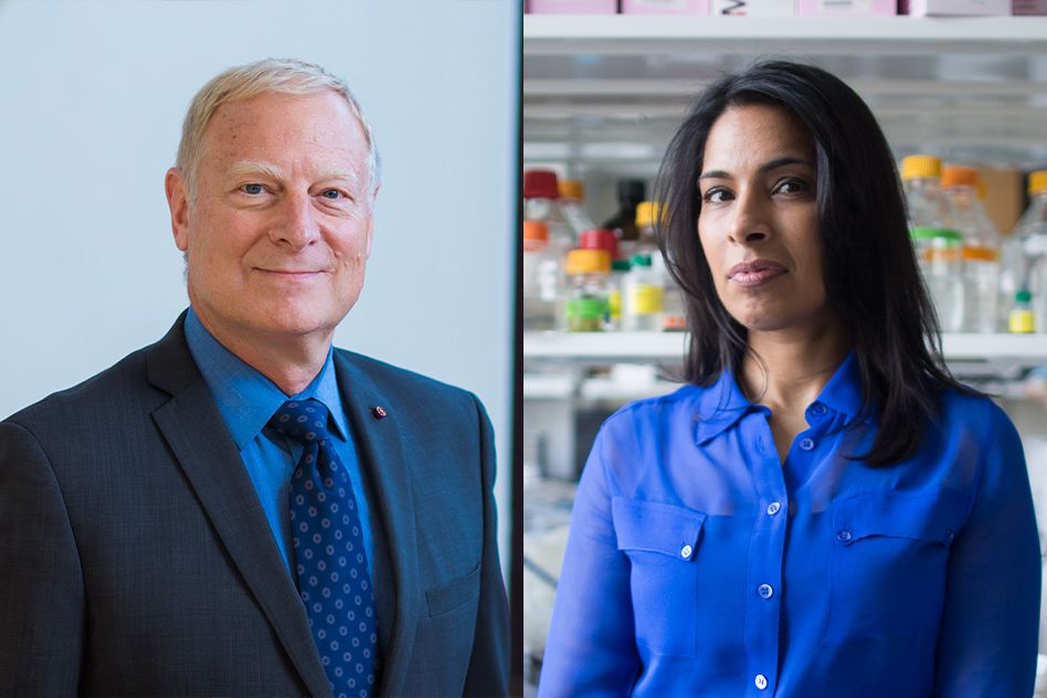 Two from MIT elected to the National Academy of Medicine for 2019
