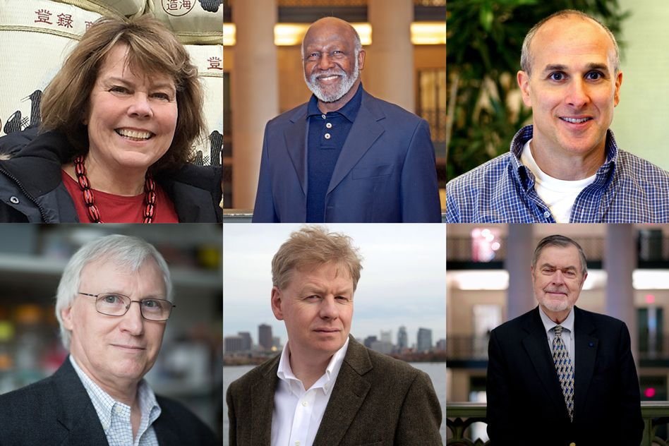 Six MIT faculty elected 2019 AAAS Fellows