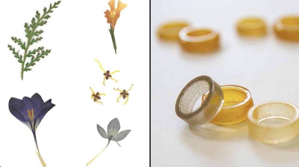Pollen research inspires art