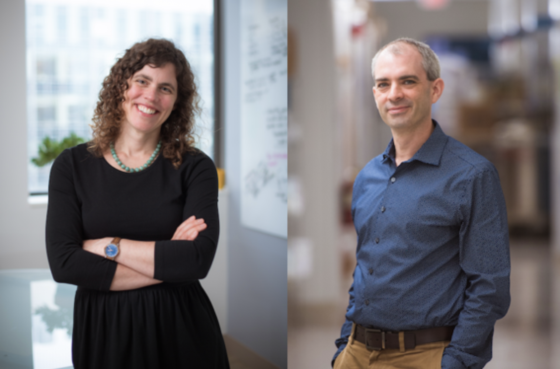 Mary Gehring and Iain Cheeseman appointed to endowed professorships