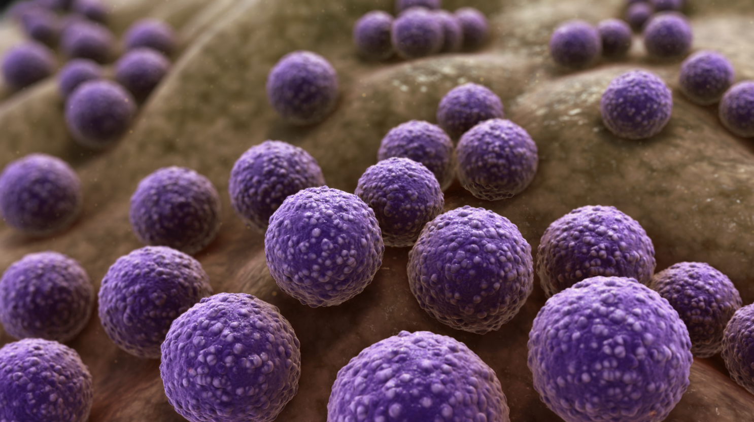 Antibiotic resistance: How to prevent the next public health emergency