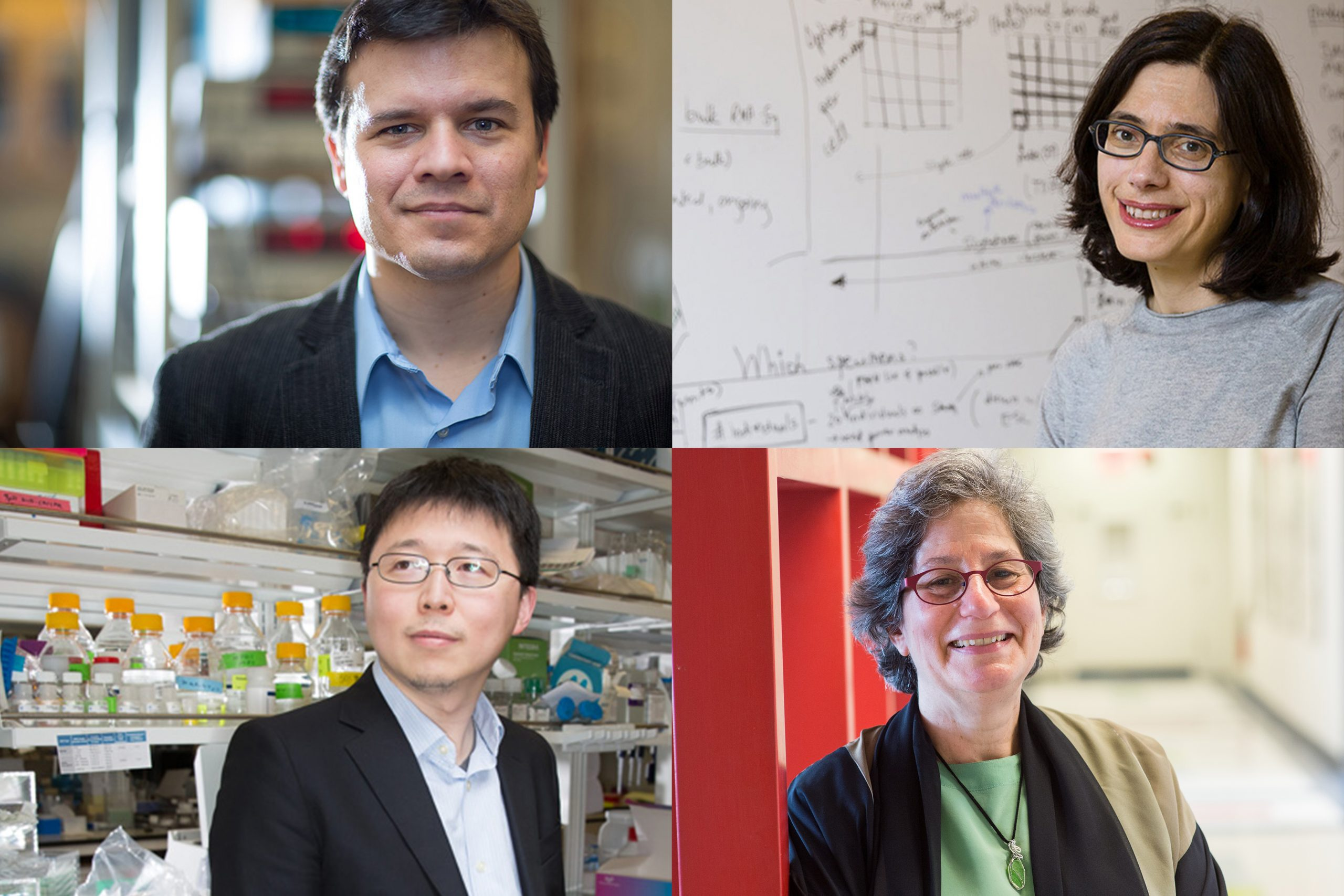 Four MIT scientists honored with 2021 National Academy of Sciences awards