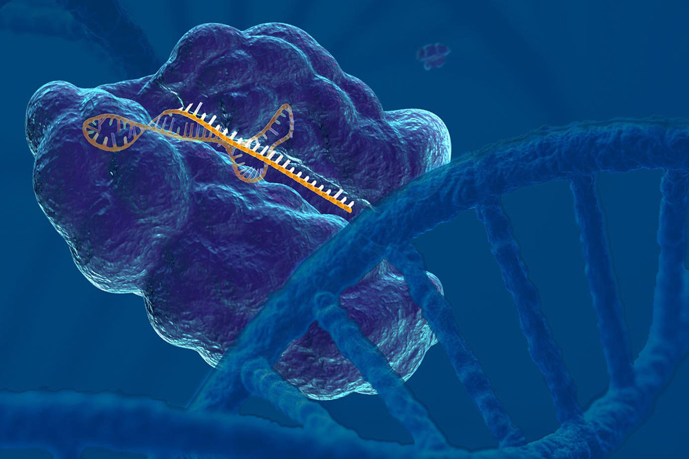 Using CRISPR as a research tool to develop cancer treatments