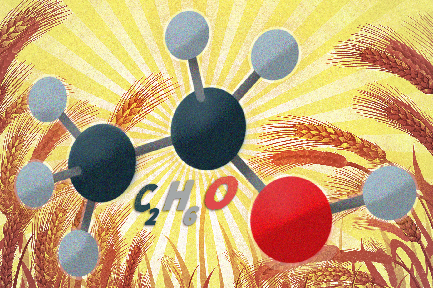 Engineered yeast could expand biofuels' reach
